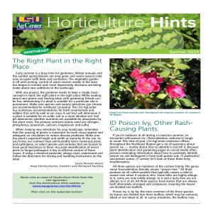 Hort Hints Summer 2020 NORTHEASTpdf thumbnail