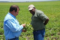 A tour of soybean field