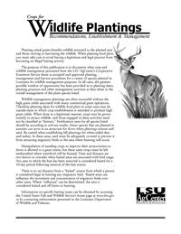 Crops for Wildlife Plantings