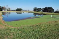 Southeast research station