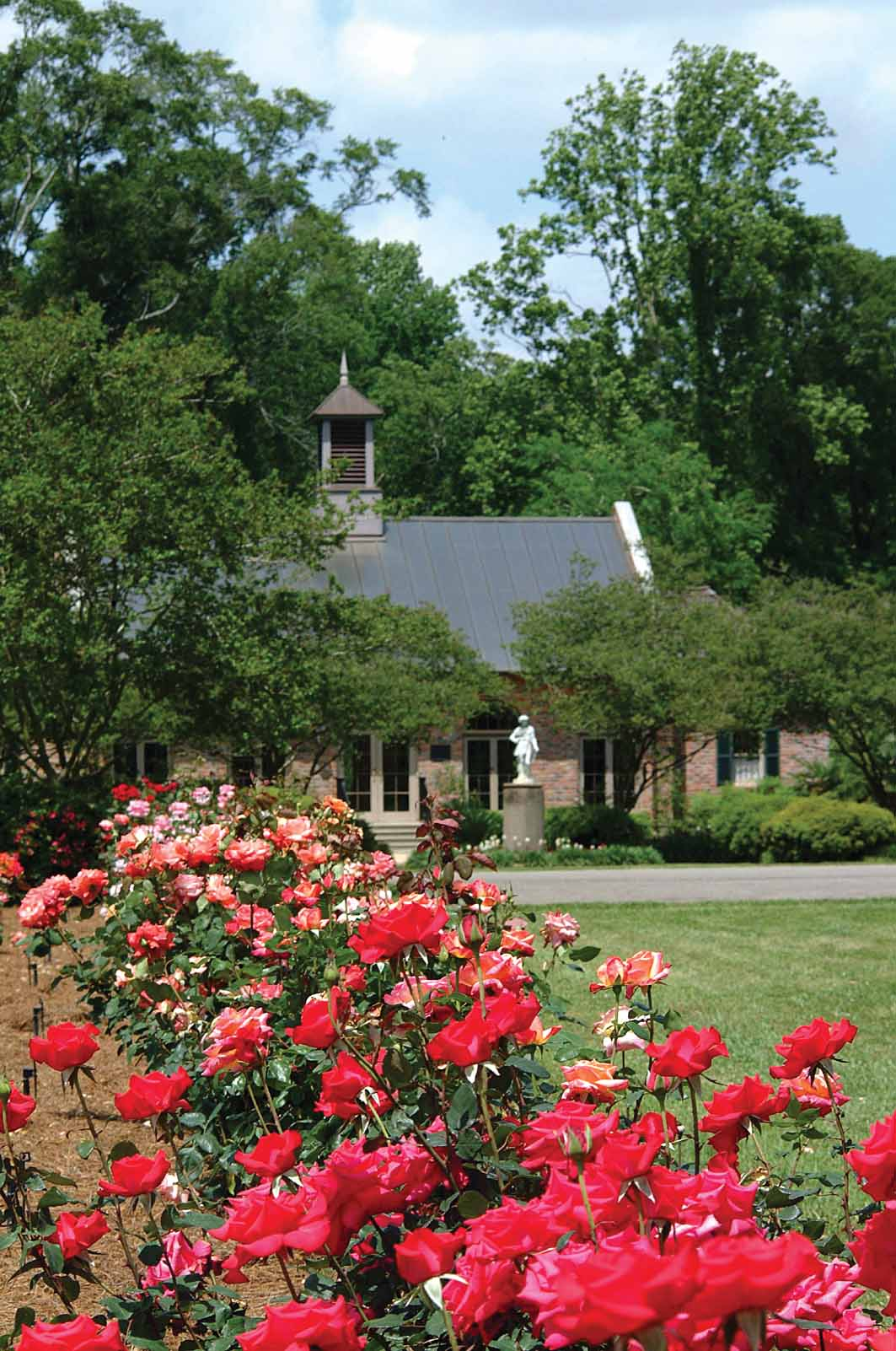 Burden center home to ornamental turfgrass research lsu agcenter for The gardens of the american rose center