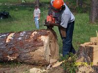 cutting log