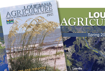 Louisiana Agriculture Magazine
