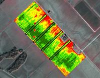 An example of NDVI image.