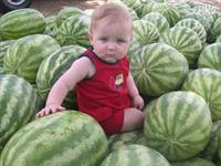 Children love Louisiana melons