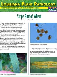 Louisiana Plant Pathology Series (Wheat) Stripe Rust of Wheat.