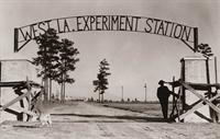 The Rosepine Research Station in Vernon Parish 1947