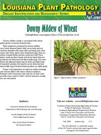 Louisiana Plant Pathology Series (Wheat) Downy Mildew of Wheat