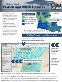 Image of Flood Map Portal Flier