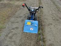 shallow cultivation with rotary tiller