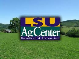 Please click here for information about LSU AgCenter Forestry Extension.