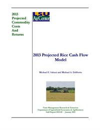 2013 Projected Rice Cash Flow Model