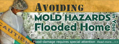 Avoiding Mold Hazards in Your Flooded Home