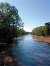 Tangipahoa River