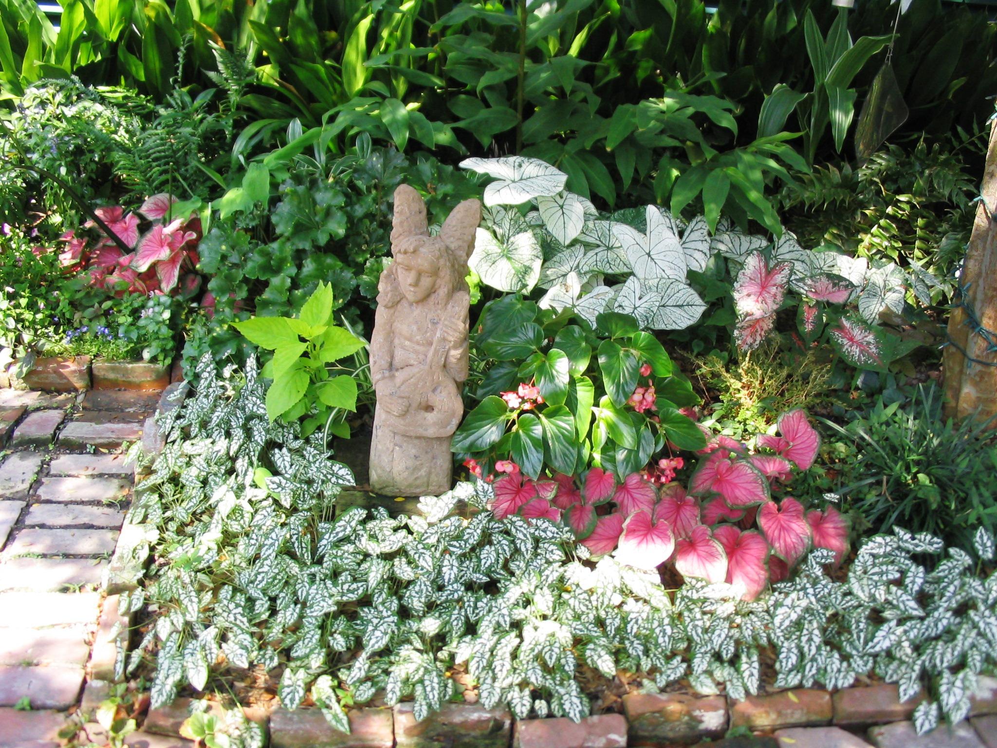 Garden Plants In Shade Pdf