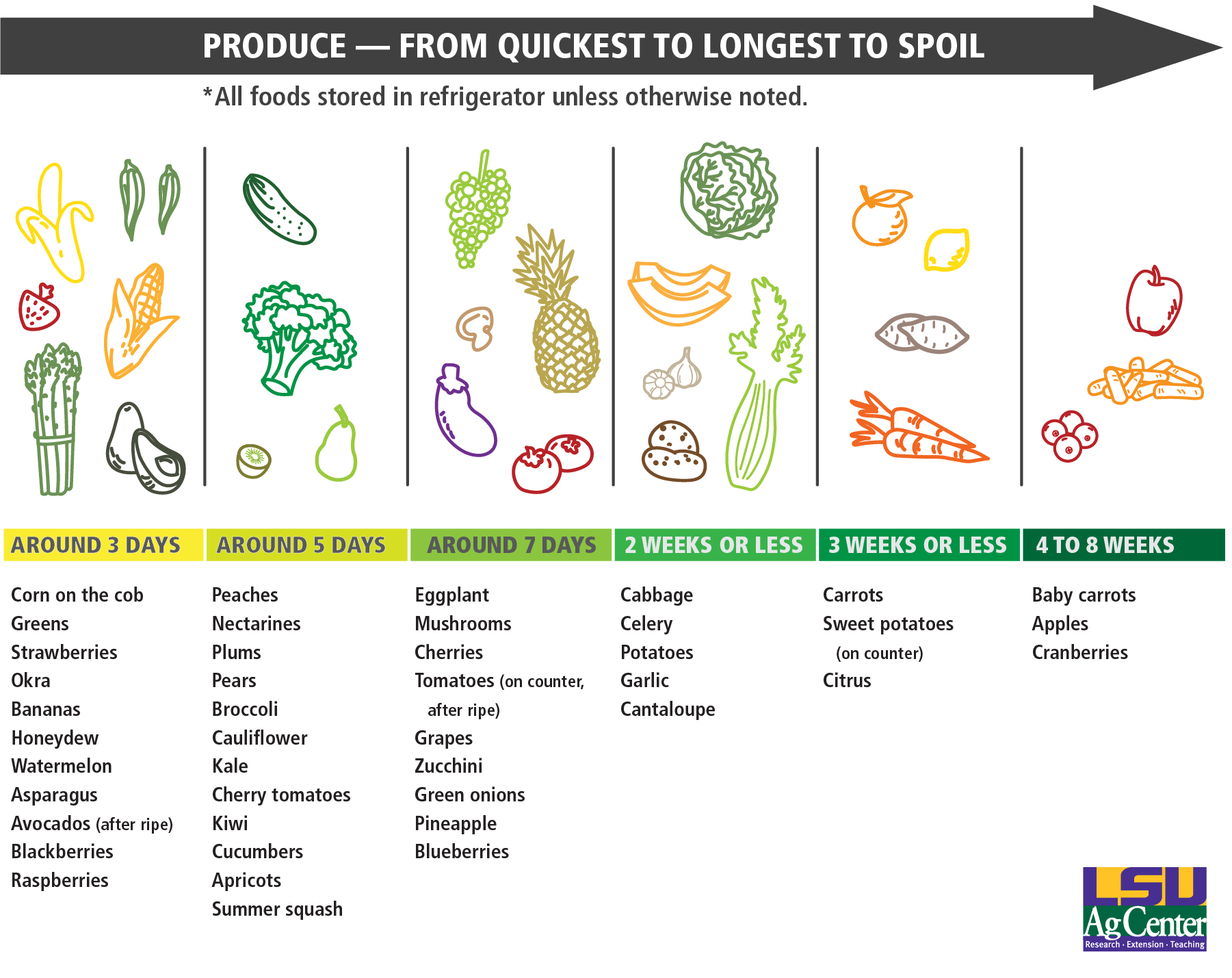 New Produce Lifespan chart 150 ppipng