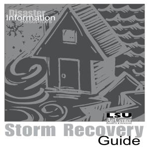 Pub2668StormRecoveryGuide2006LOWRES thumbnail