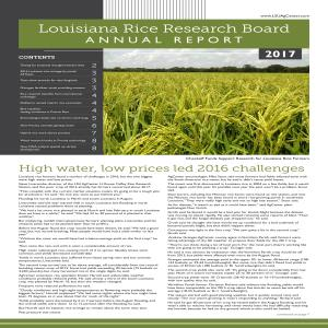 2017 Rice Research Report_FINALpdf thumbnail