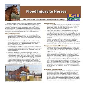 pub3563floodinjuries in Horses2016pdf thumbnail