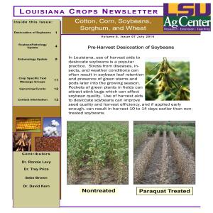 Louisiana Crops Newsletter July 2016pdf thumbnail