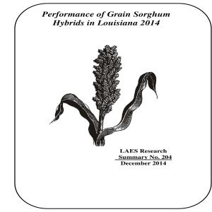 2014 Performance of Grain Sorghum Hybrids in Louisianapdf thumbnail