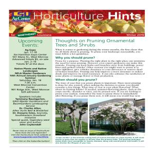 Hort Hints NE region winter 2019pdf thumbnail