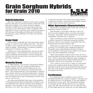 2010 Grain Sorghum Hybrids for Grainpdf thumbnail
