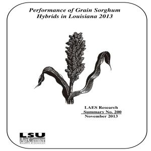 2013 Performance of Grain Sorghum Hybrids in Louisianapdf thumbnail
