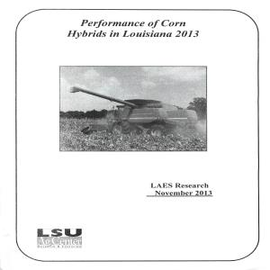 Performance of Corn Hybrids in Louisiana 2013pdf thumbnail
