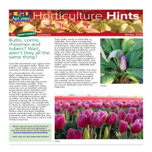 Hort Hints NW region winter 2019pdf thumbnail