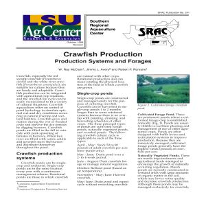 crawfish_prod_systems_forages thumbnail