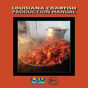 pub2637CrawfishProductionManualLOWRES thumbnail