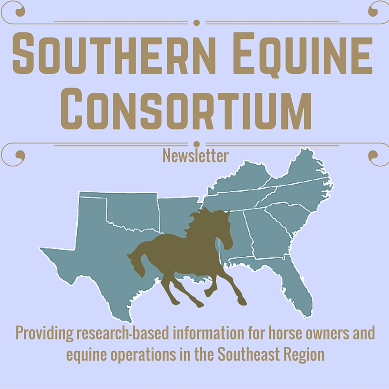 Southern Equine Consortium