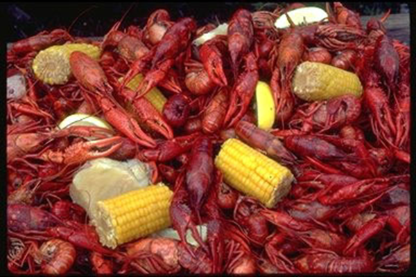 Boiled crawfish with corn