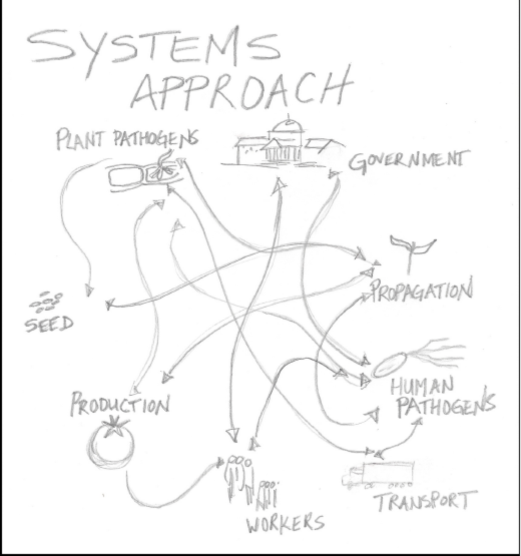 A Systems Approach to Greenhouse Disease Management