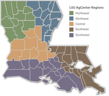 Louisiana Region Map