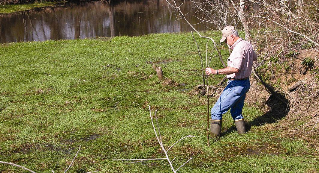 Howard Inspects Watergrass