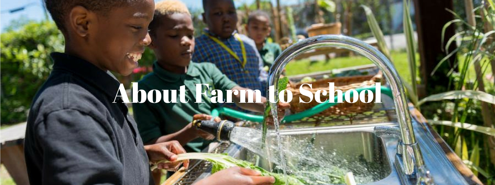 About Farm to School4.jpg thumbnail