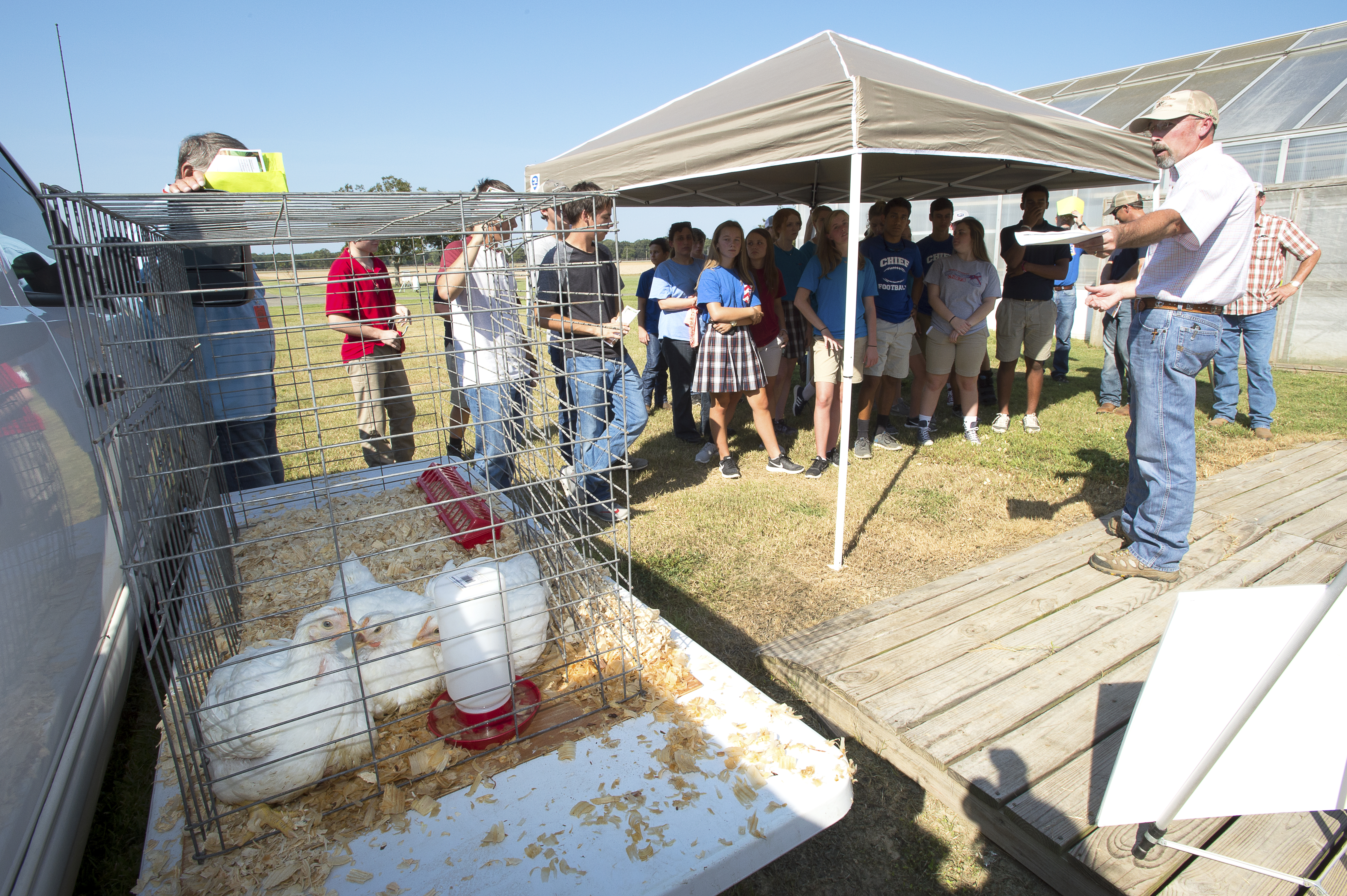 Agriculture awareness featured at youth field day