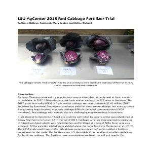 LSU AgCenter 2018 Red Cabbage Fertilizer Trial