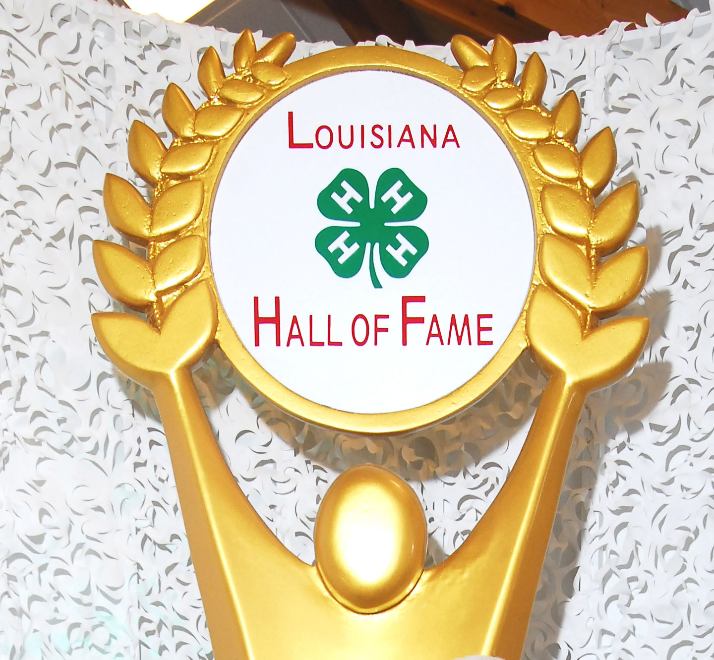 12 new members set for 4-H Hall of Fame