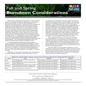 Fall and Spring Burndown Considerations