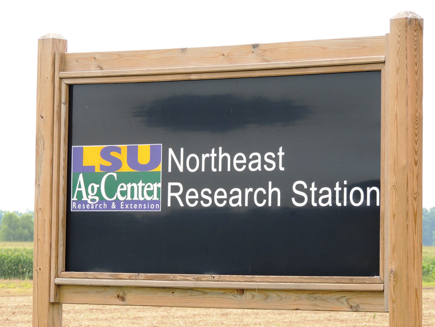 Northeast Research Station