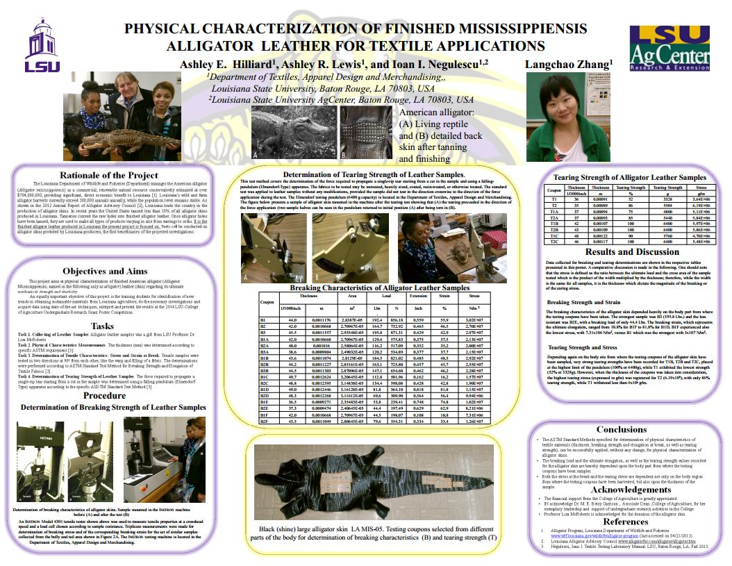 Research poster by Dr. Negulescu