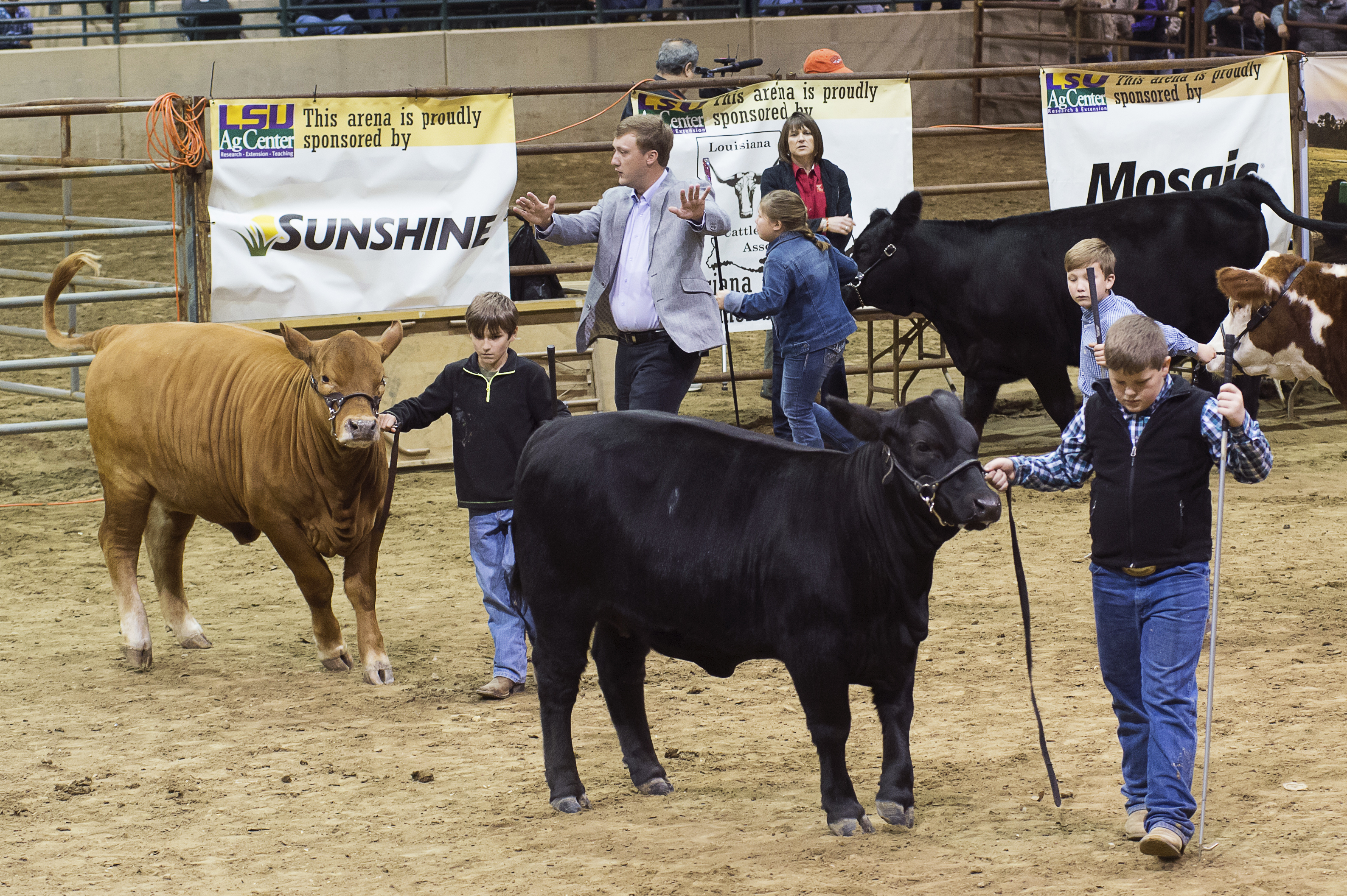 Louisiana youths named champions at 82nd Annual LSU AgCenter Livestock Show