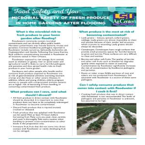 Food Safety and You: Microbial Safety of Fresh Produce in Home Gardens After Flooding