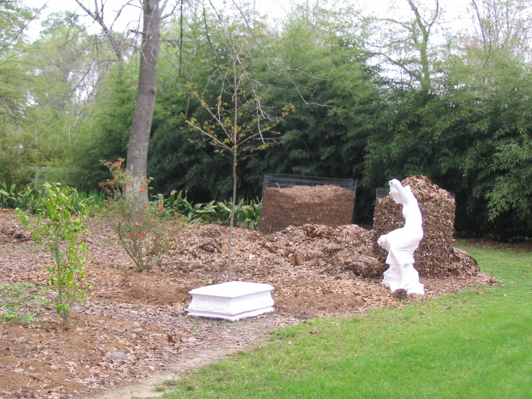 compost in landscape.JPG thumbnail