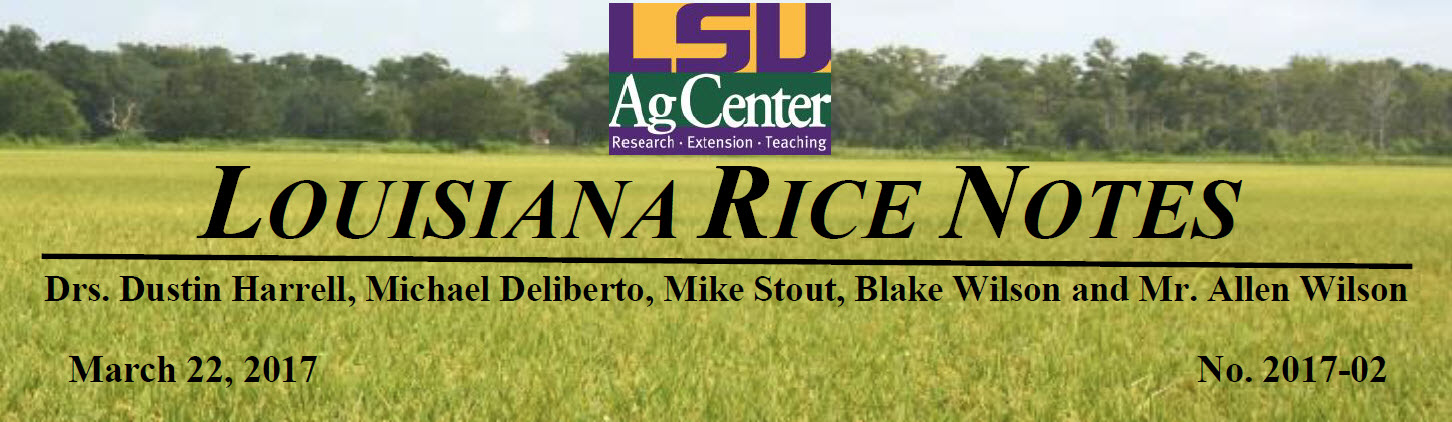 2017 Louisiana Rice Field Notes #2