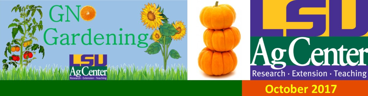 GNO Gardening October 2017 Newsletter