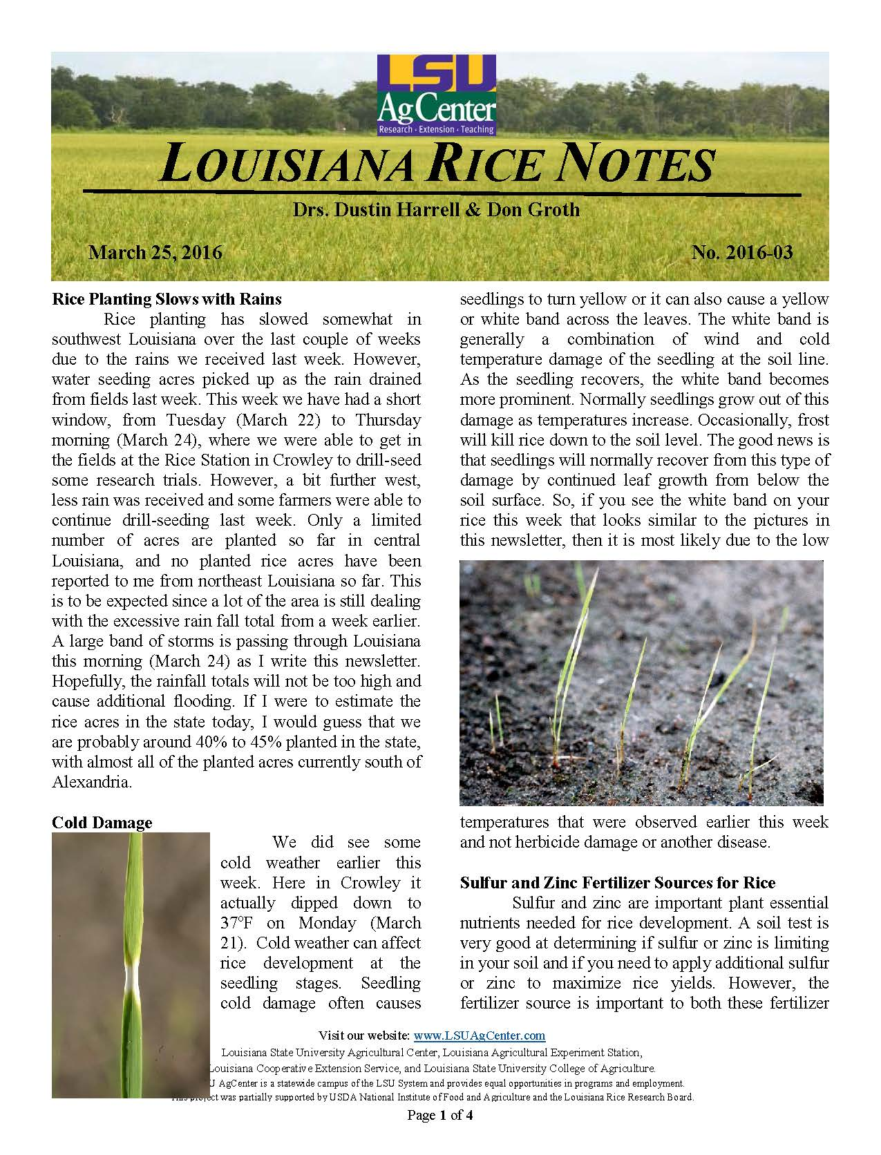 2016 Louisiana Rice Field Notes #3